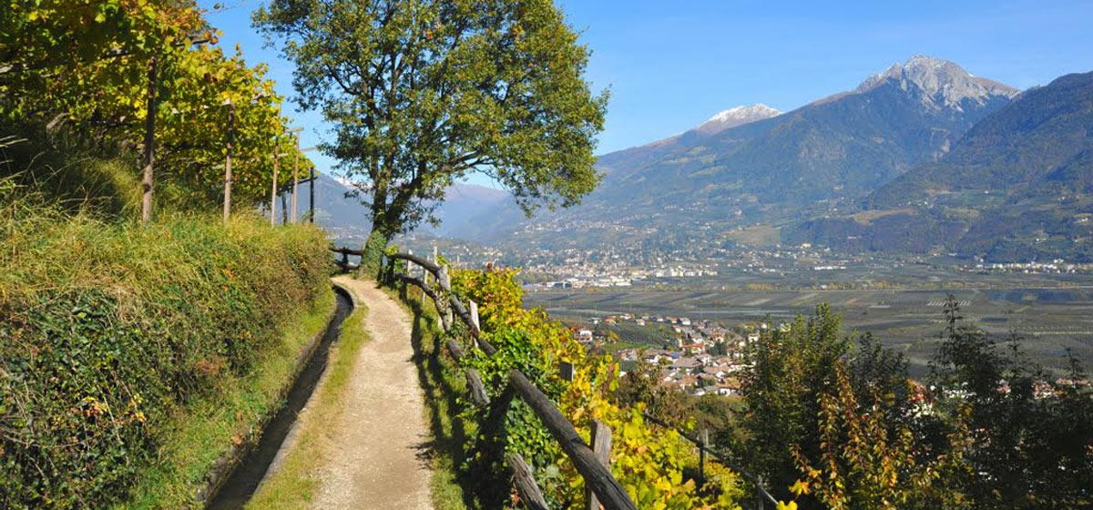 Wandern in s dtirol campingurlaub in den alpen for Hotel in lana sudtirol